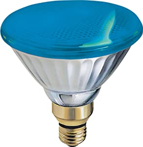 GE Outdoor Floodlight 13465 85-Watt PAR38 Blue Light Bulb with Medium Base, 1-Pack
