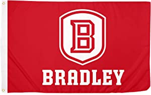 Desert Cactus Bradley University BU Braves NCAA 100% Polyester Indoor Outdoor 3 feet x 5 feet Flag