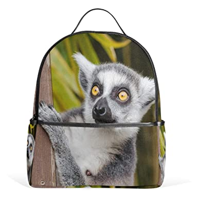 4278fd1b15 MUOOUM Ring Tailed Lemur Backpack Casual Daypack School College Travel Bag  for Teens Boys Girls