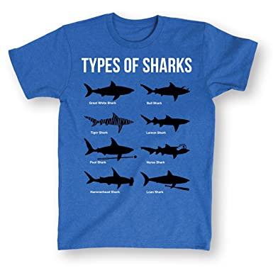 0c28174a6 Image Unavailable. Image not available for. Color: Types of Sharks Funny  Blue T-Shirt-Comical Shark Species Shirt Medium-M