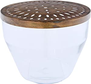 Creative Co-op Vase with Metal Frog Lid Glass Container, Bronze