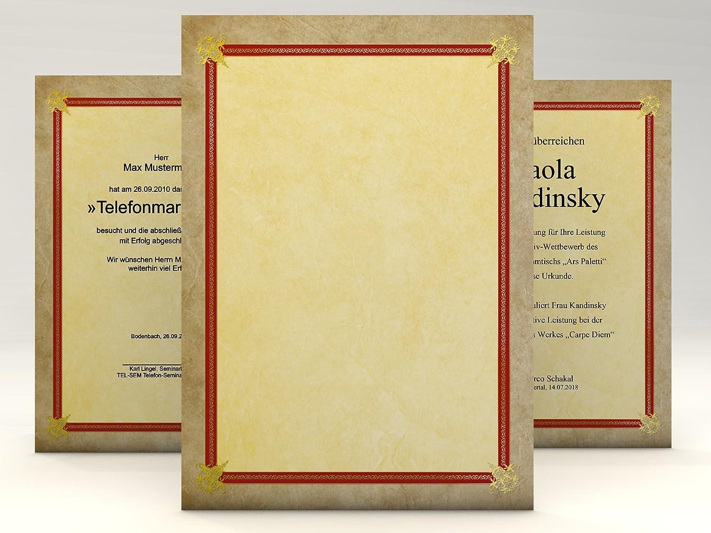 190g//qm Urkundenpapier Success 100 Blatt f/ür Zertifikate DIN A4
