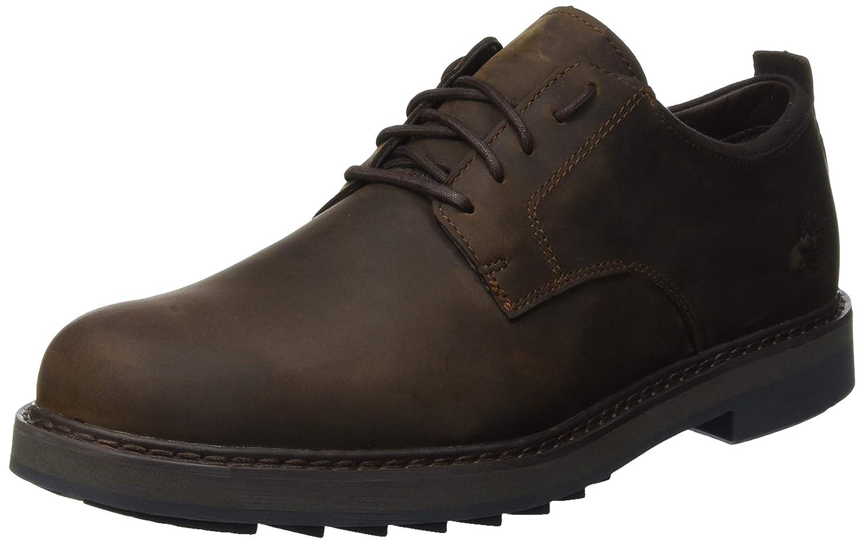Timberland Squall Canyon Waterproof, Zapatos de Cordones Oxford para Hombre