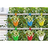 NYALKARAN NK-STORE's Garden and Balcony Decorative Hanging Railing and Table Flower Planter Pot (Small , 20X15X2.5 cm, Multicolour) - Set of 6