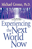 Experiencing the Next World Now (English Edition)