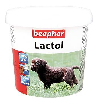 Leche en polvo fortificada para cachorros de perro y gato, con vitaminas, 500 g, de Beaphar: Amazon.es: Productos para mascotas