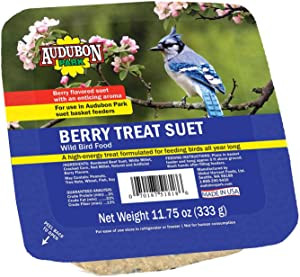 Audubon Park 13066 Berry Treat Suet Cake Wild Bird Food, 11.75-Ounces