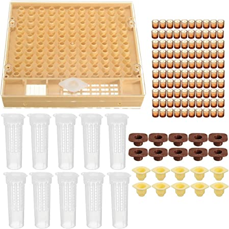 100 Cell Cups Complete Queen Rearing Cupkit System Bee Beekeeping Catcher Box