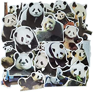 Panda Cute Adorable Animal Kids Sticker Pack(50-pcs),No Repeat Simulation Puffy Panda Bear Stickers for Fridge Car Bike Laptop Guitar Water Bottle with Waterproof PVC