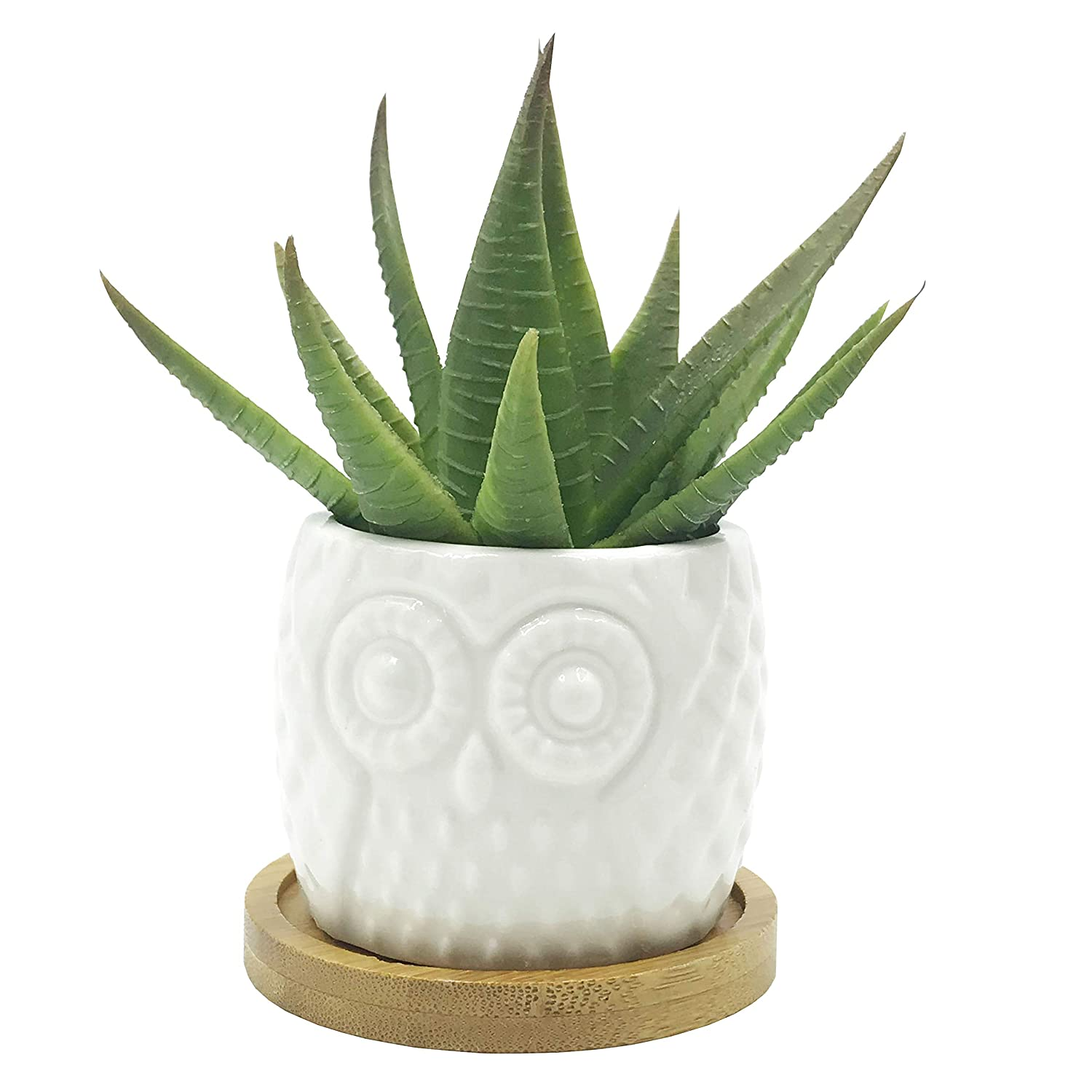 Cute Cartoon Animal Owl Shaped Ceramic Cactus Succulent Flower Plant Pot Planter with Bamboo Tray Plant Not Included