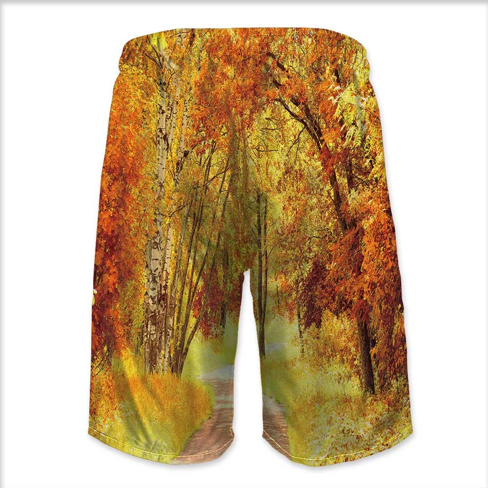 aolankaili Mens Swim Trunks,Pathway in Plitvice Lakes Park at Quick Dry Board Shorts