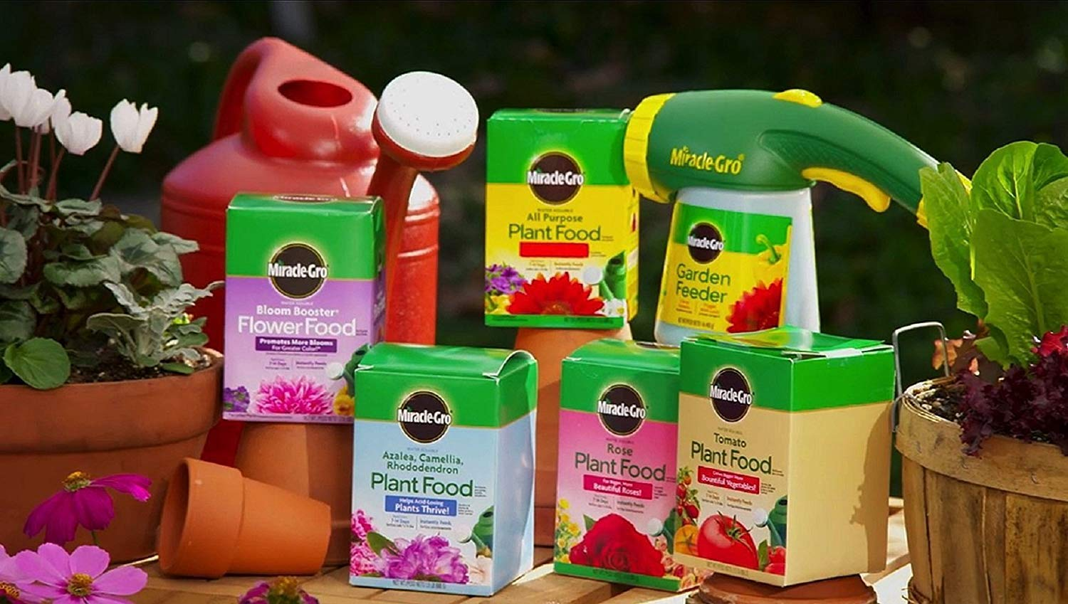 Miracle-Gro Rose Plant Food, 1.5-Pounds (Rose Fertilizer), 4 Pack