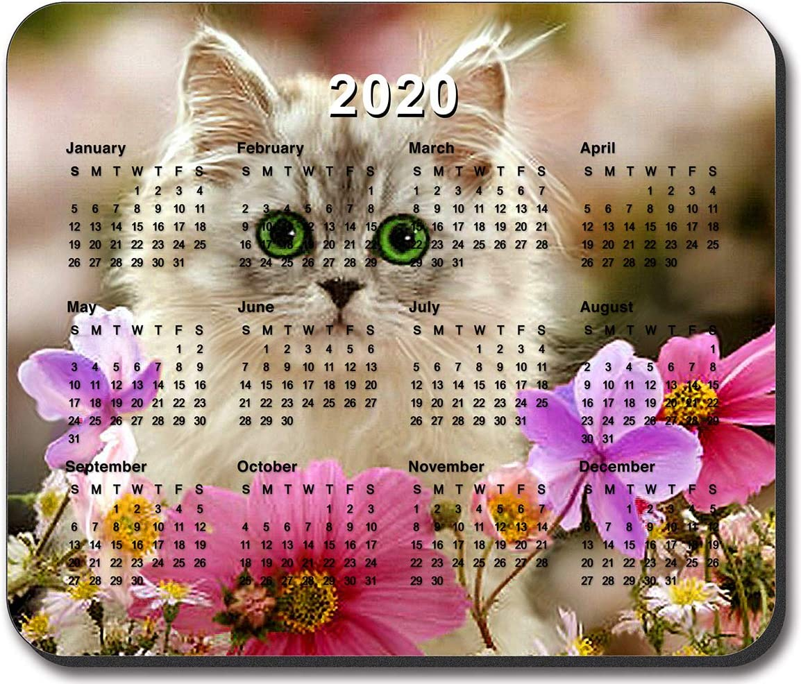 Art Plates Brand with 2020 Calendar Kitten in The Flowers Mouse Pad