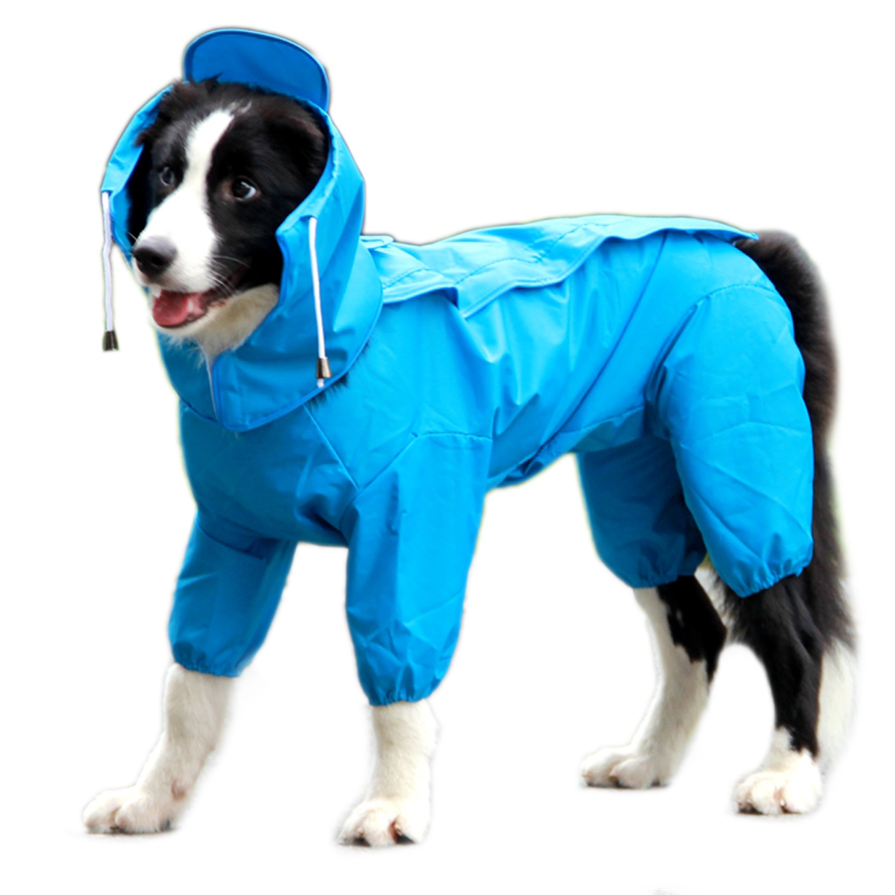 Alfie Pet by Petoga Couture - Bella Rainy Days Waterproof Raincoat (for Dogs and Cats) - Color: Blue, Size: Large