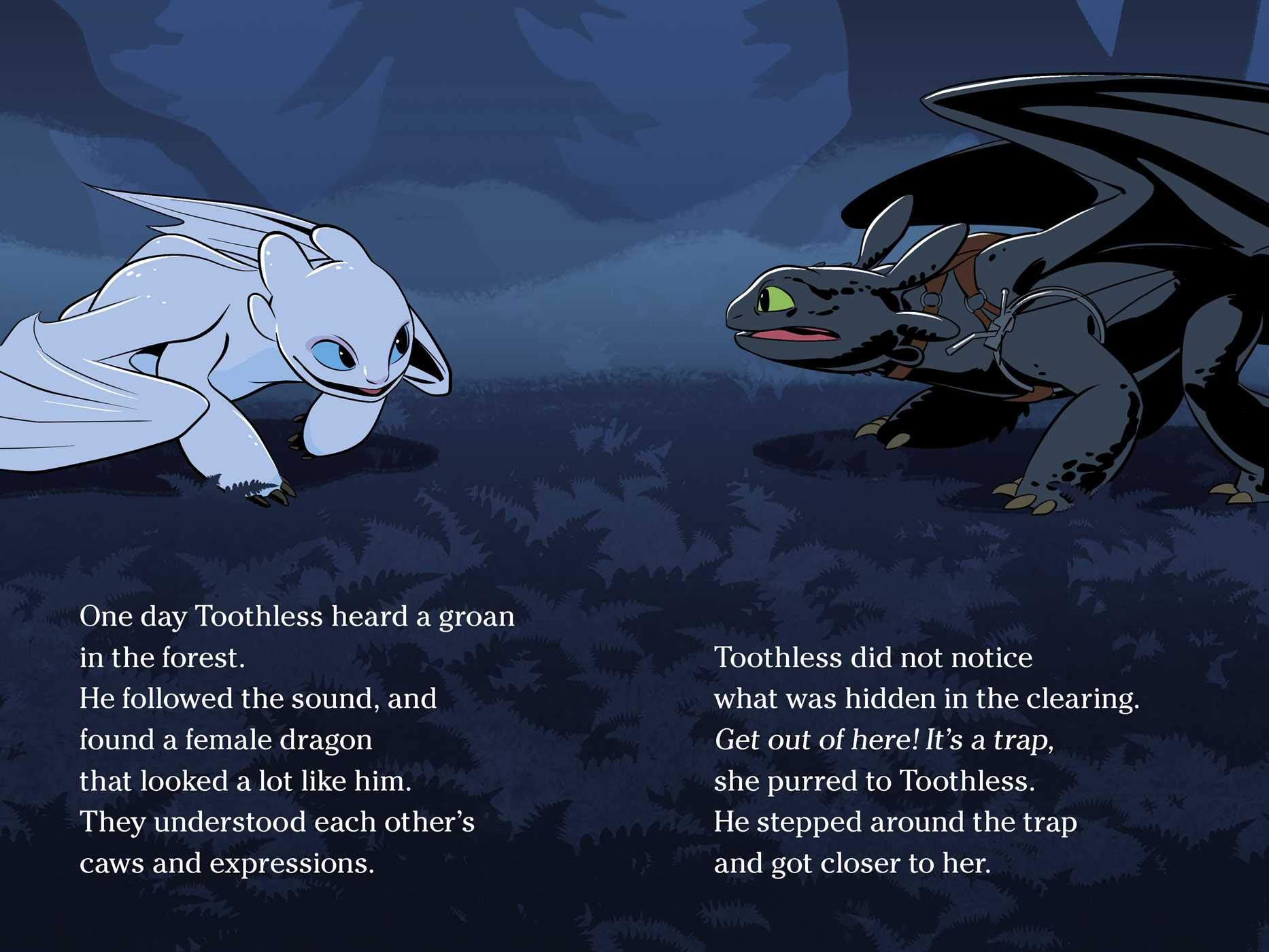 The Night Fury and the Light Fury How to Train Your Dragon
