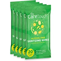 Care Touch Alcohol-Free Hand Sanitizing Wipes (5 Pouches) | 100 Antibacterial and Moisturizing Sanitizing Wipes with Vitamin E + Aloe Vera | for Babies and Adults