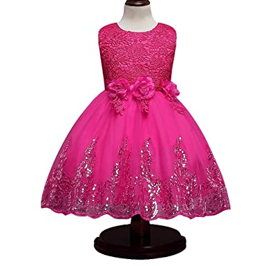 c1b49634 HUANQIUE Girls Lace Wedding Party Dresses Flower Girl Birthday Dress  HotPink 2-3 T