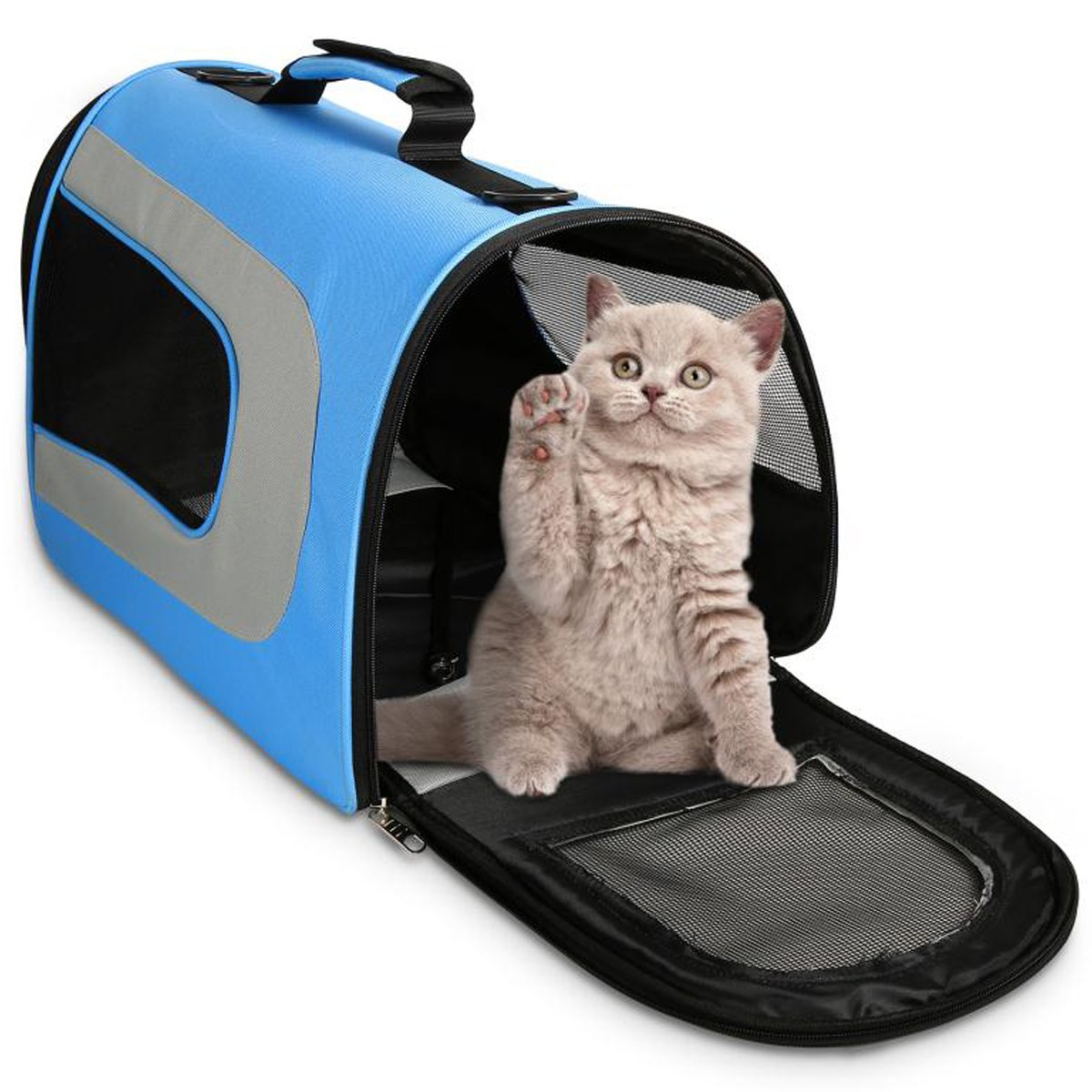 WOT I Soft Sided Pet Carrier, Cat Carrier Dog Carrier Airline Approved Pet Carrier Suitable for Small Dogs and Cats, Medium Cats and Dogs, Puppy, Kittens, Small Animals, Travel Bag, Blue
