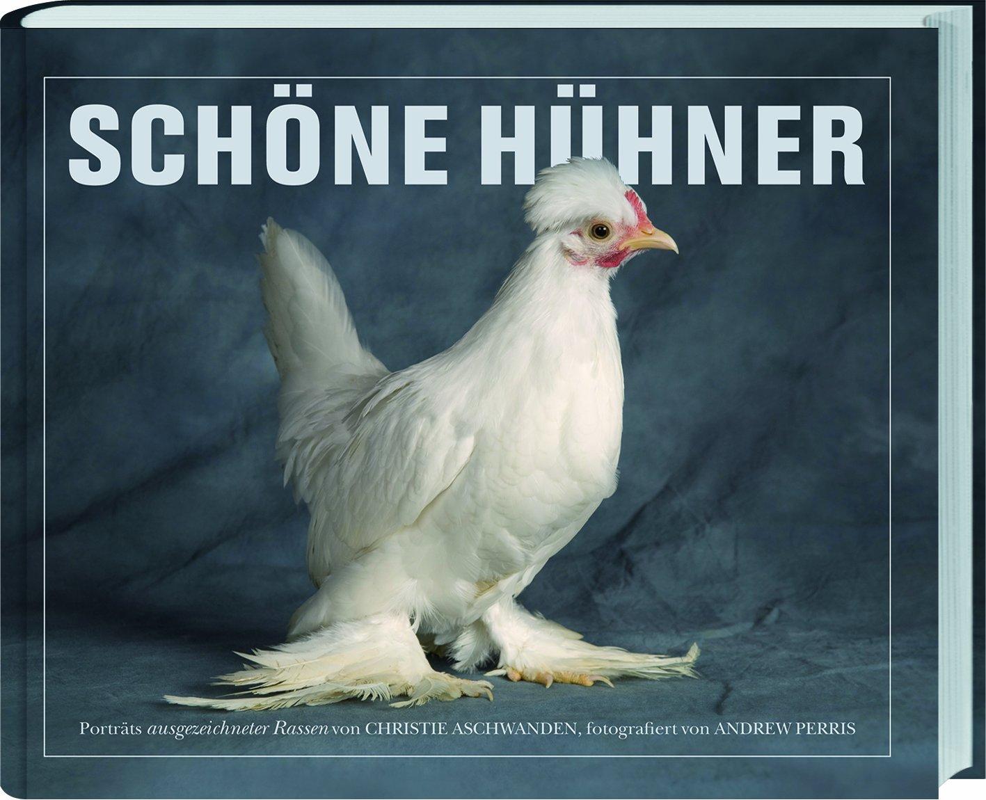 Schöne Hühner