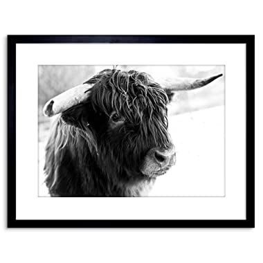 The Art Stop Photo Composition Animal Livestock Highland Cow Bull Framed Print F97X5508