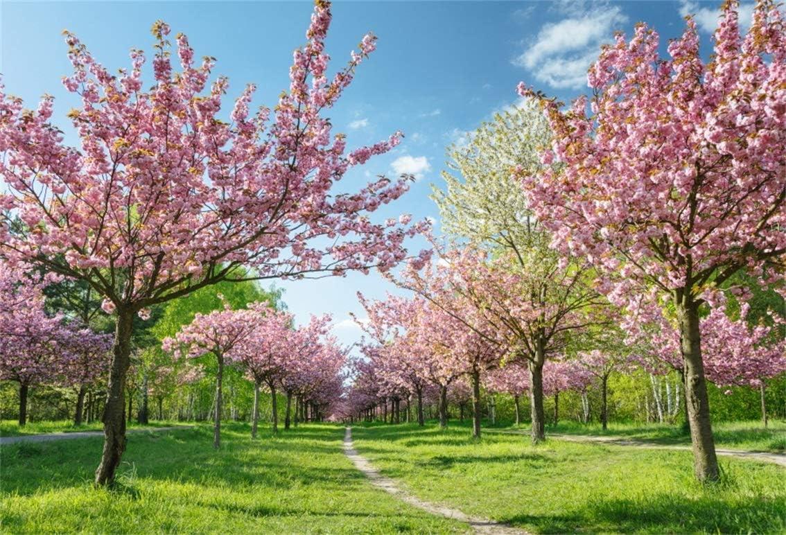 Leyiyi 10x8ft Cherry Blossom Photography Background Spring Flower Floral Petals Trees Garden Sky Cloud Grassland Backdrop Meadow Path Wedding Kids Birthday Photo Portrait Vinyl Studio Prop