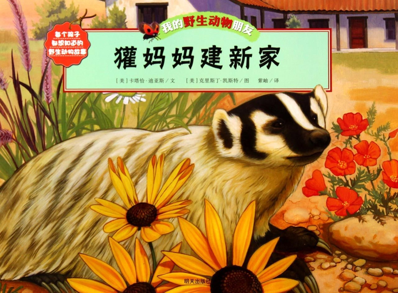 The Badger Mother Building a New Home ebook