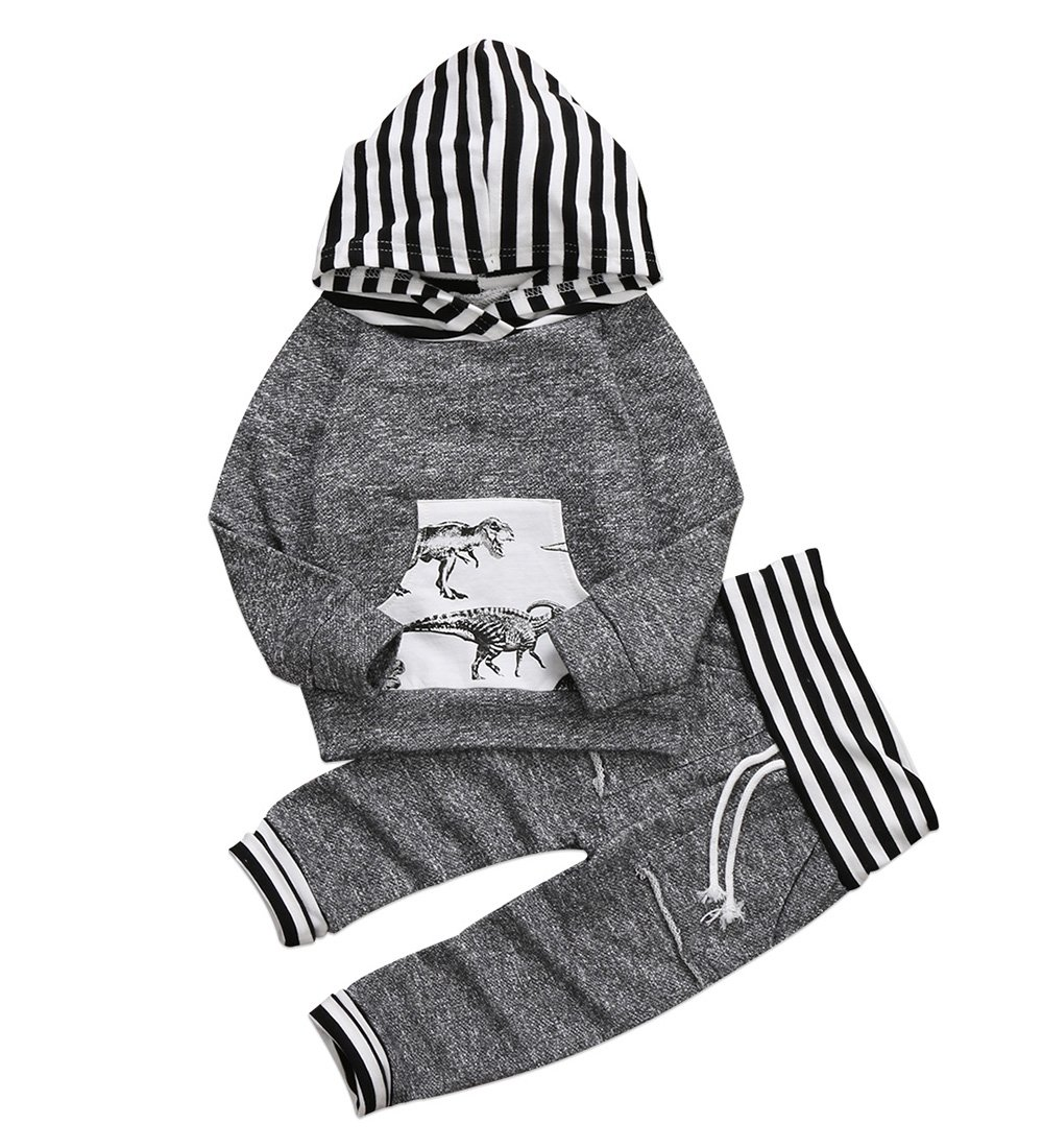 Toddler Infant Baby Boys Dinosaur Long Sleeve Hoodie Tops Sweatsuit Pants Outfit Set (18-24 Months, Dinasour)