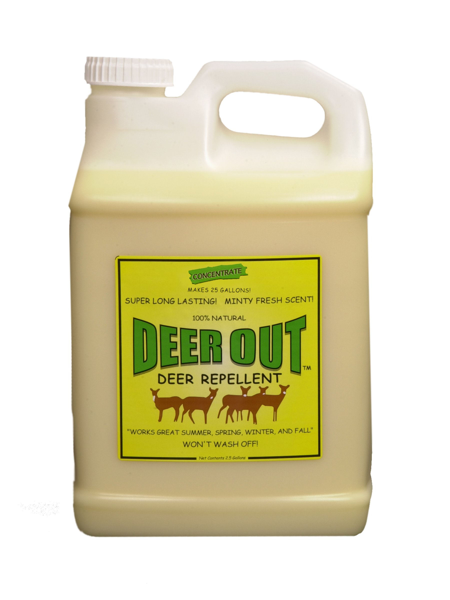 Deer Repellent: Deer Out deer repellent 2 1/2 gallon concentrate by Deer Out