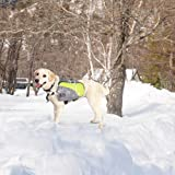 Petsfit Dog Pack Hound Travel Camping Hiking