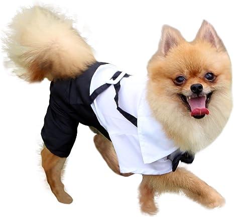 QiCheng & LYS Smoking Perro Ropa para Perros Traje Elegante con Estilo de Corbata de moño, Camisa de Esmoquin Formal con Traje de Corbata Negra (S)