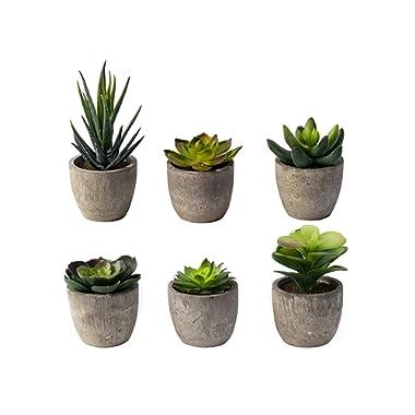 6 Pots Small Artificial Succulent Plants Mini Fake Faux Suculentas Pot For Shelf Kitchen Counter Office Decor Tiny Miniature Desk Plant Succulents Decoration Accessories Potted Plastic Cactus Aloe