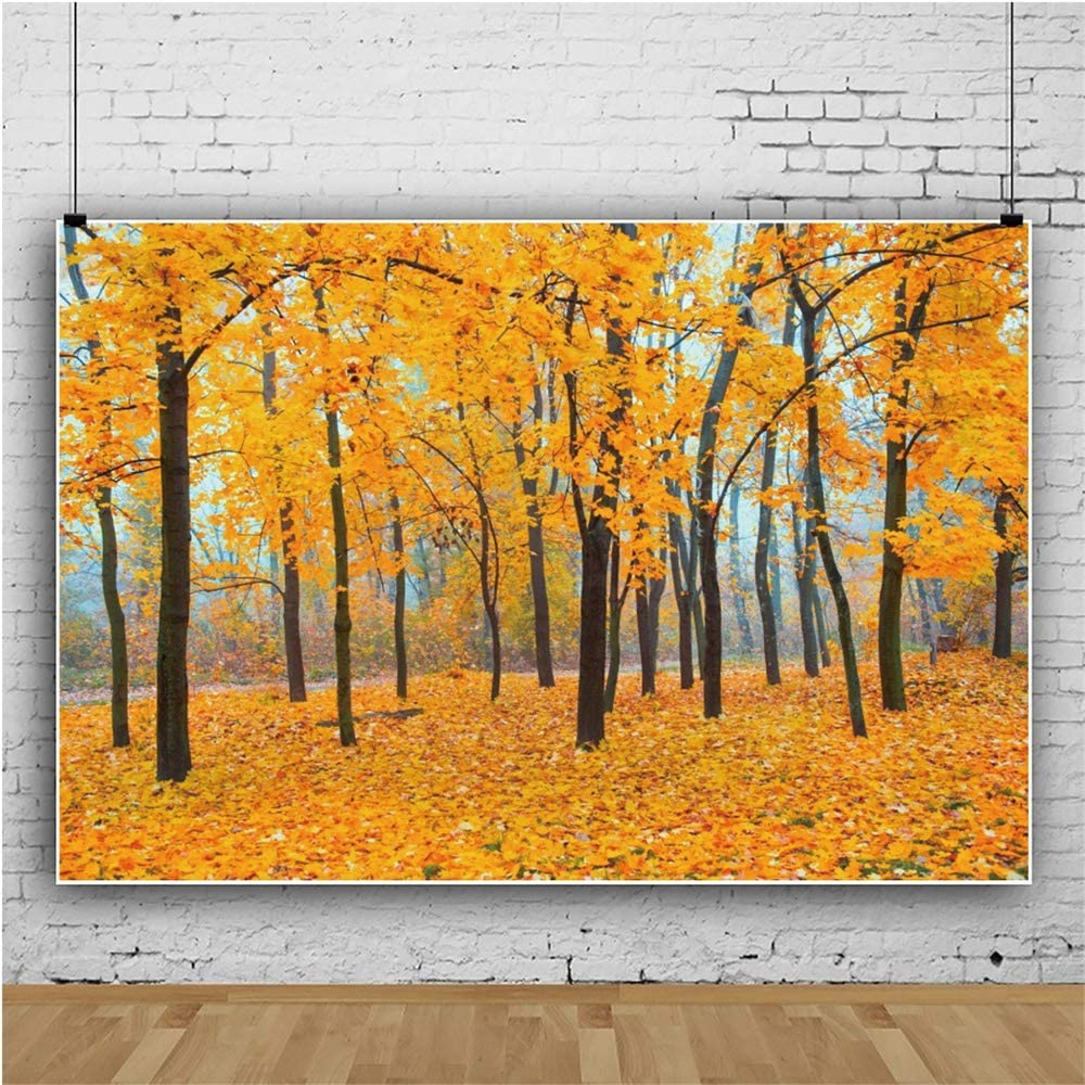 DASHAN 5x3ft Polyester Fall Forest Path Backdrop Fall Wedding Autumn Foliage Party Autumn Park Scene Fallen Leaves Photography Background Birthday Party Fall Theme Party Outdoor Travel Photo Props