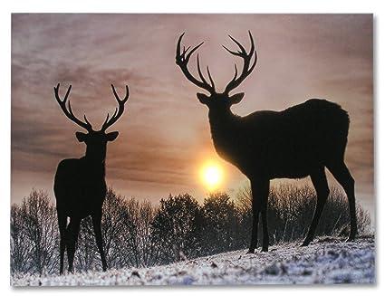 Deer Winter Scene   Light Up Deer Picture   LED Wrapped Canvas Print Shows  2 Deer