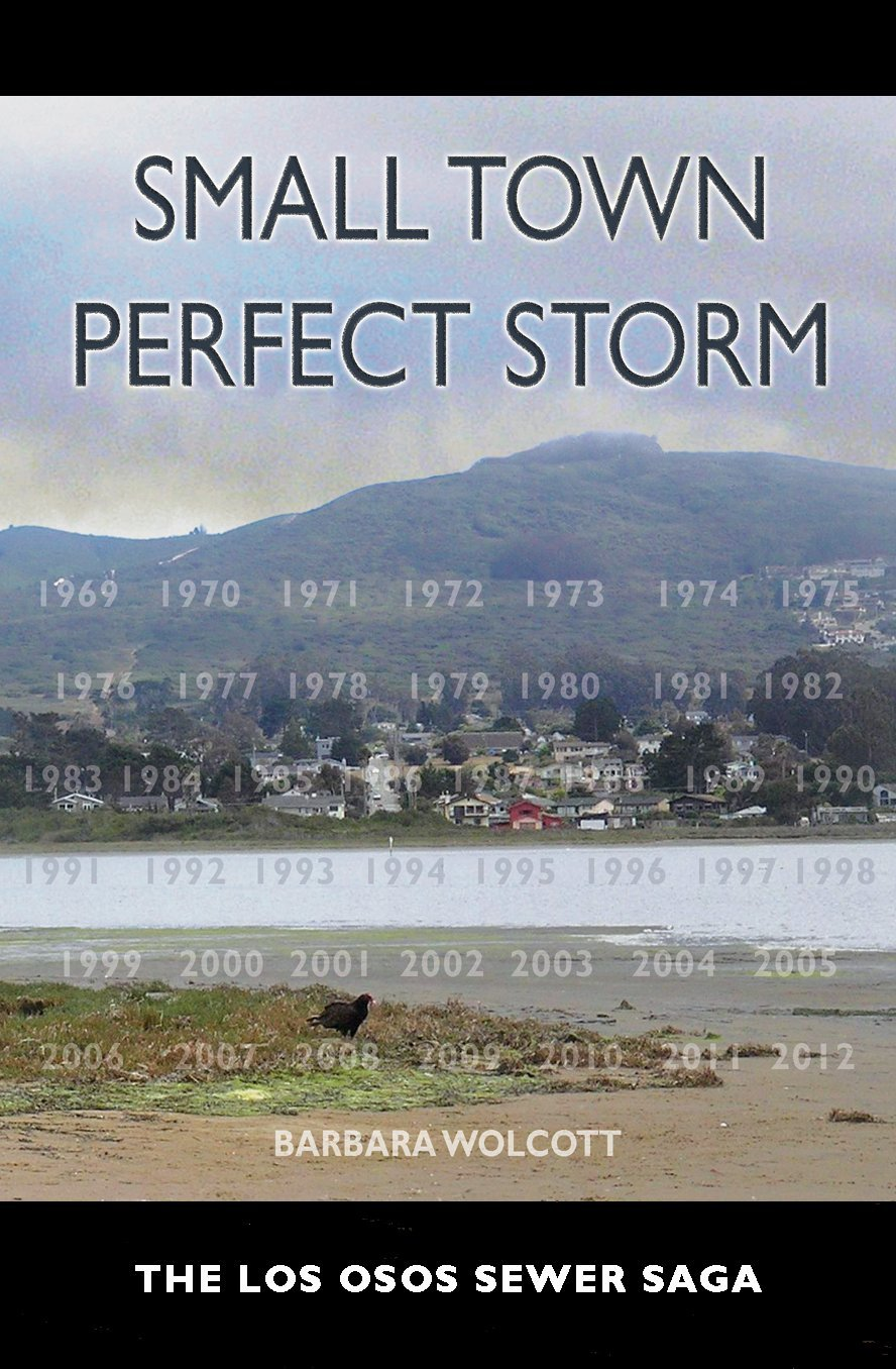 Download Small Town Perfect Storm, The Los Osos Sewer Saga pdf