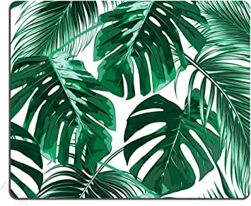 Amazon Com Tropical Leaf Mousepad Mat Beautiful Design Leaves Green With White Background Rectangle Mouse Pad Electronics Download 82,367 background leaves tropical white stock illustrations, vectors & clipart for free or amazingly low rates! tropical leaf mousepad mat beautiful design leaves green with white background rectangle mouse pad
