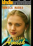 Adopting Amish