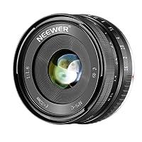 Neewer Obiettivo Fisso Manuale 32mm F/1.6 con Apertura Grande Nitida, Compatibile con Fotocamere Mirrorless Sony E-Mount APS-C come Sony NEX 3, 3N, 5, 5T, 5R, 6, 7, a7, A5000, A5100, A6000, A6100, A6300, A6500, A9