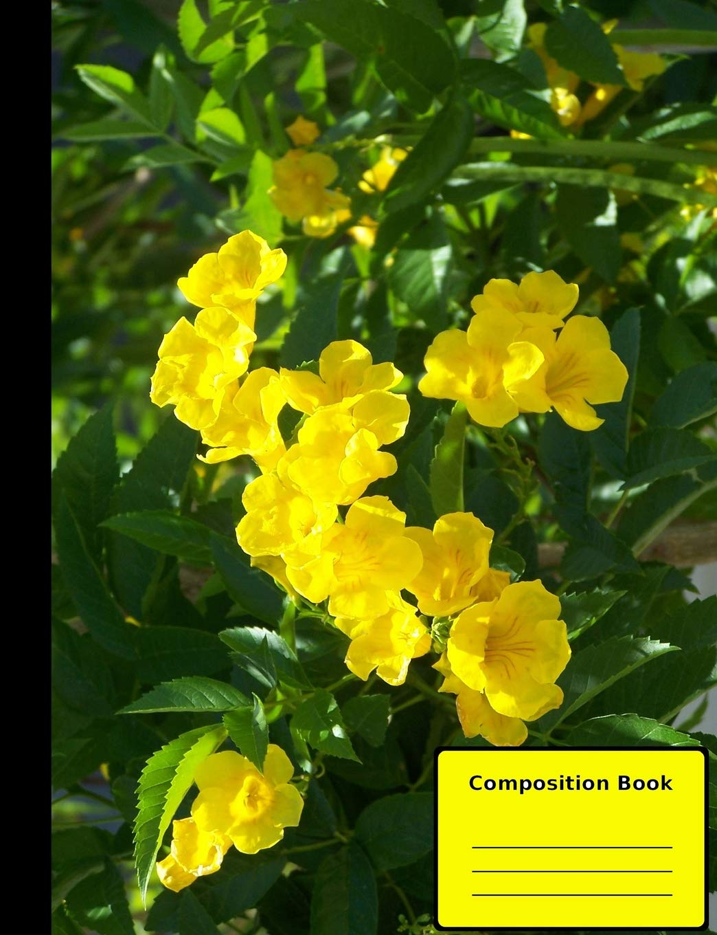 "Cats Claw Vine Composition Notebook, Wide Ruled: 100 sheets / 200 pages, 9-3/4"" x 7-1/2"" pdf epub"