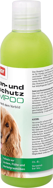 Champú antigarrapatas y antipulgas para Perros y Gatos a Partir de 12 semanas, champú antigarrapatas de 250 ml: Amazon.es: Productos para mascotas