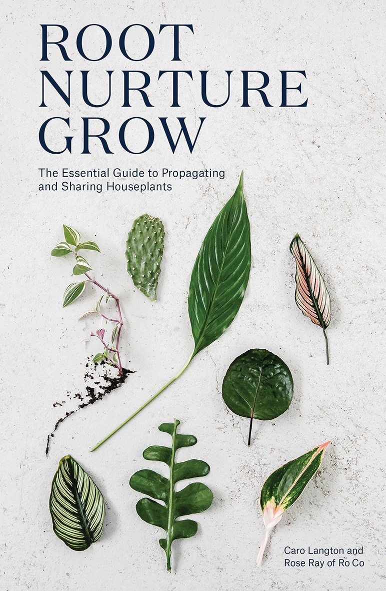 Root, Nurture, Grow: The Essential Guide to Propagating and Sharing Houseplants by Quadrille Publishing