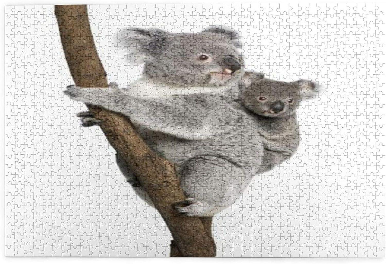 Juego desafiante para adultos, rompecabezas grandes como regalo para recoger Koala, oso australiano en una rama, 1000 piezas