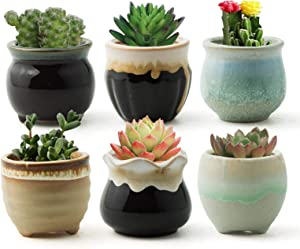 FairyLavie Succulent Pots, 2.5'' Ceramic Succulent Planter, Small Succulent Pot with Drainage, Great for Home Decor and Ideal Gift, Set of 6