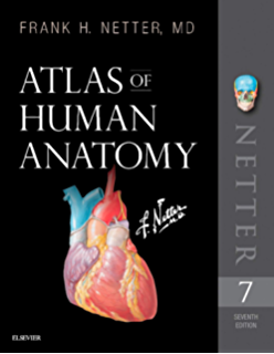 Anatomy A Photographic Atlas Color Of