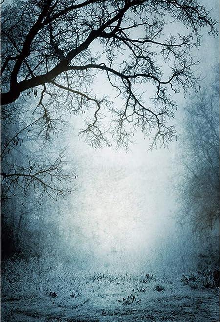 Yongfoto 2x3m Halloween Hintergrund Düsterer Wald Kamera