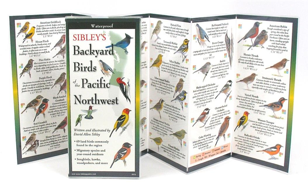 Download Sibley's Back. Birds of Pacific Northwest (Foldingguides) PDF