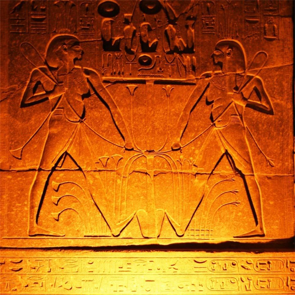 Yeele 4x4フィート 古代エジプトの壁画背景 写真撮影用 - 写真背景 - ヒエログリフ アンティークカルチャー 背景 壁 書き込み 彫刻 フレスコ 子供 大人用 写真ブース 撮影 ビニール スタジオ 小道具   B07KGPNKFN