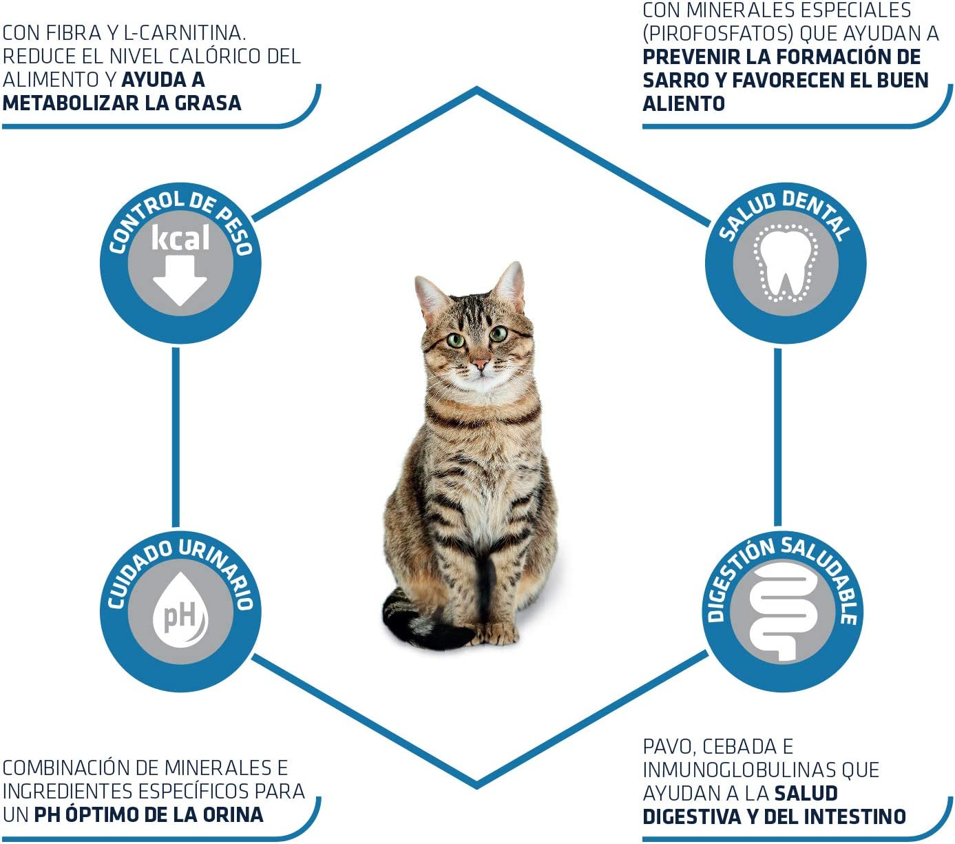 ADVANCE Pienso para Gatos Esterilizados Adultos con Pavo - 1 ...