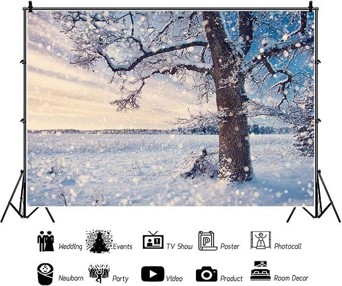 Oerju 2 7x1 8m Winter Landschaft Hintergrund Schöner Kamera