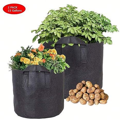 LXYZZDYG [Paquete De 2] Plantas para Cultivo De Plantas ...