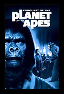 Conquest Of The Planet Of The Apes - 11x17 Framed Movie Poster by Wallspace